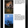 Rick's New iPad App: Life Lessons We Can Learn From Mother Nature