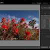 Lightroom Keys to Know